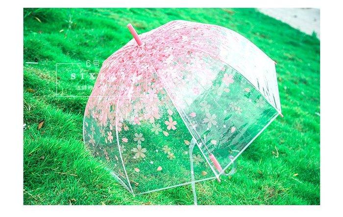 雨傘櫻花傘櫻花雨長柄兒童雨傘女神必備傘_☆找好物FINDGOODS☆