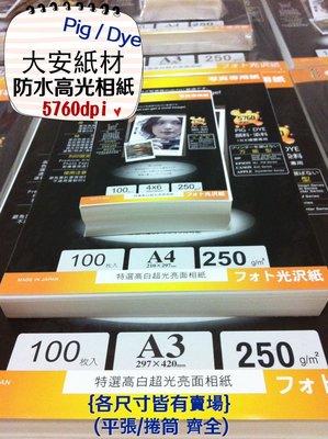大安紙材♀(大包裝)日本高白超光防水亮面相片紙5760dpi Pigment 墨水皆適用-250磅A4賣場
