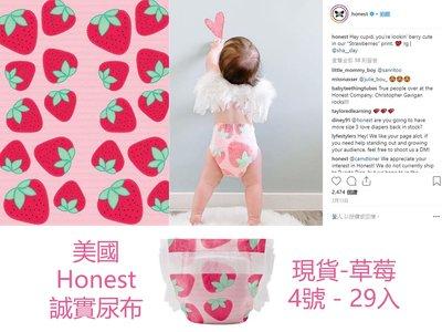 Honest 尿片 尿布 4號 誠實 美國 進口 抗過敏 紙尿褲 時尚 草莓 現貨【HO0002】