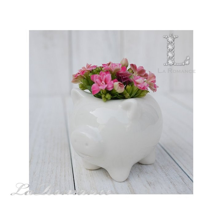 【義大利 EDG 特惠系列】 小豬陶瓷迷你花器 (白) / 盆栽 / 庭院 / 童趣