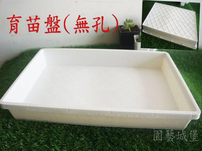【園藝城堡】育苗盤(無孔) 白色 育苗箱 栽培盤