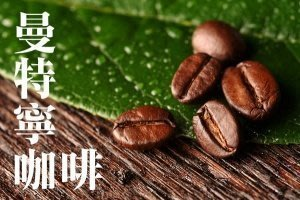 ~嚘呵咖啡~ 咖啡豆的DNA代表廠商-曼特寧咖啡(半磅)