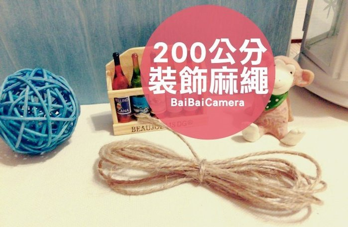 BaiBaiCamera 收納整理 2M 麻繩 200公分 可吊掛拍立得底片 裝飾相簿 另售多色小木夾