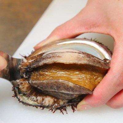 【大和水產】南非活鮑魚(顆)時價銷售