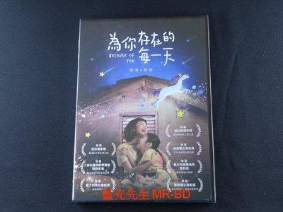 [DVD] - 為你存在的每一天 Because of You ( 得利正版 )