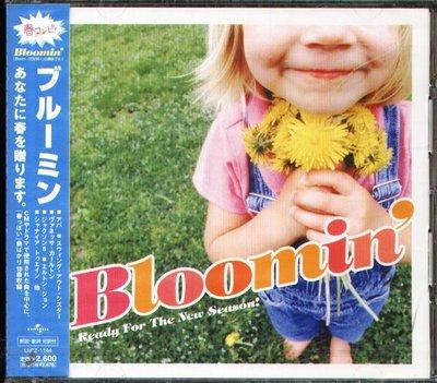 K - BLOOMIN' READY FOR THE NEW SEASON 日版 - NEW ABBA BOYZ II