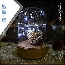 音樂青蛙Sweet Garden, 9.5xH12.5cm玻璃罩+欅木旋轉音樂盒含燈串底座(可選曲) 熱銷DIY永生花禮