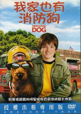 菁晶DVD~ 我家也有消防狗 FIREHOUSE DOG -二手正版DVD(下標即售)