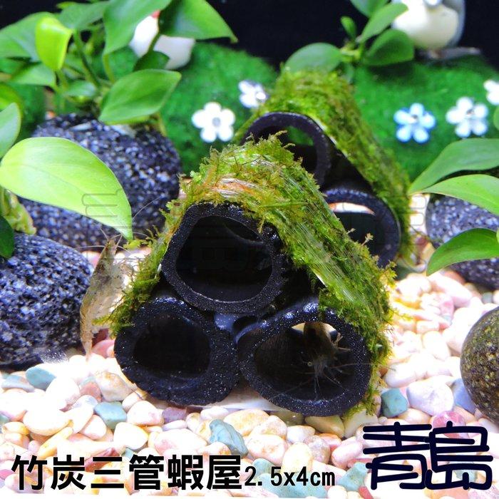七月缺。。。青島水族。。。臺灣天然水草----【陰性】三角莫絲 莫斯 默思(竹炭管.三管蝦屋)==5顆200