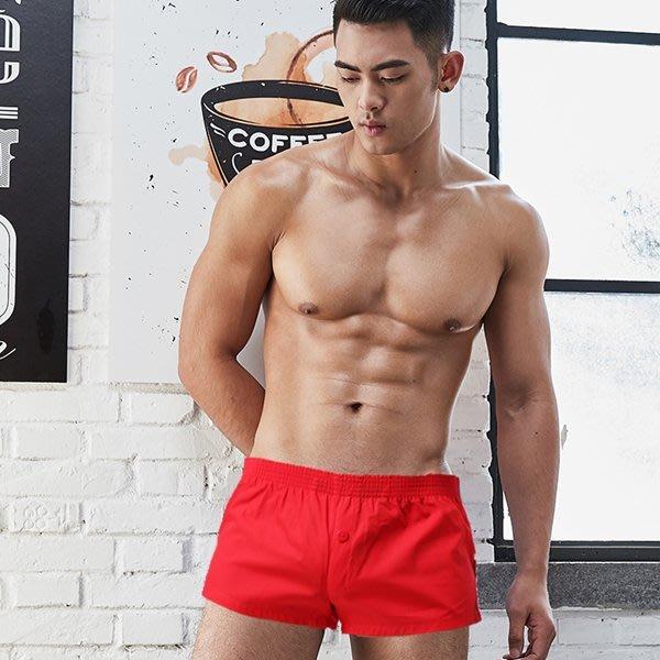 純棉四角平口內褲 HOSTAR 584065  睡褲 內褲 泳褲  三角褲 平口褲
