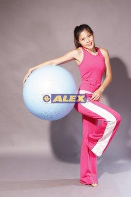 ALEX 韻律球B-2902 抗力球 瑜珈球(65cm)