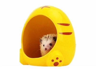(現貨)大王小動物 巨大陶瓷窩 倉鼠 蜜袋鼯 松鼠 刺蝟 睡鼠