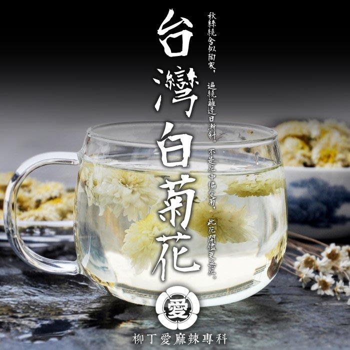 柳丁愛☆台灣國產 天然 白菊花50G【A508】可泡茶也可入菜