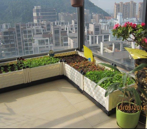 三代特大型種植箱陽台種菜盆設備長條形花盆花架花槽