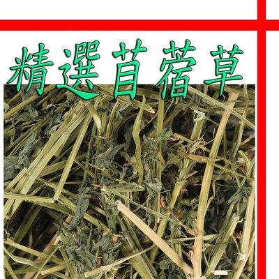 【格瑞特寵物】進口 兔子天然分裝牧草 苜蓿草 1000g 天竺鼠 龍貓