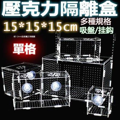 現貨單格15x15x15cm超透亞克力隔離盒【掛勾/吸盤款 任選】壓克力繁殖盒、壓克力隔離盒、壓克力拍照盒孵化魚缸可參考