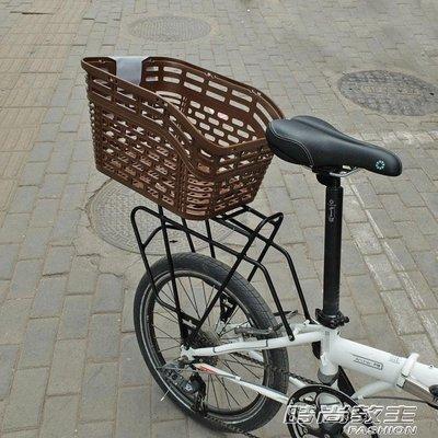 車筐車籃出口日本原單自行車後置山地車菜筐寵物狗狗筐後車框籃PE