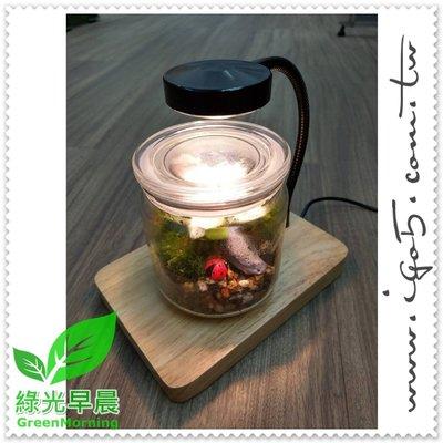 晨語植物燈座 USB充電 (不含生態缸)