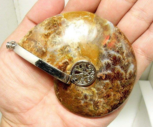 小風鈴~天然極品彩虹光包框完整斑彩螺化石墜子(重151.8g)