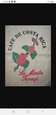 【Peekaboo咖啡館】 哥斯大黎加 塔拉珠 拉米尼塔 1/4lb 季節限定商品