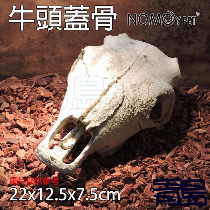 Y。。。青島水族。。。NS-74中國NOMO諾摩-骨頭 化石 躲藏棲息 造景裝飾 水族魚缸繁殖躲避==牛頭蓋骨