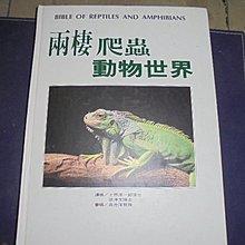 牛哥哥二手書***觀賞魚雜誌社出版-兩棲爬行動物世界(精裝本)