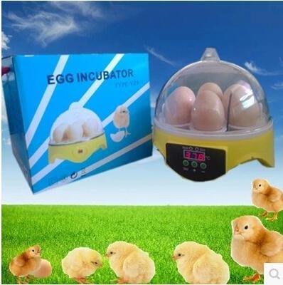 小型孵化器全自動微型孵蛋器鴿子雞鴨鵝家禽家用型孵化箱限時   全館免運