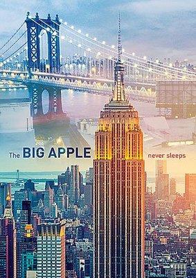 (藝) 波蘭Trefl 1000片拼圖 紐約帝國大廈 10393