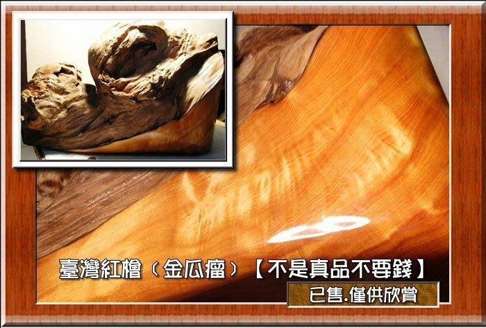【檜樂森林歡迎您】 ﹝世界第一‧五木之首.﹞【.阿里山系一級木〝紅檜〞】