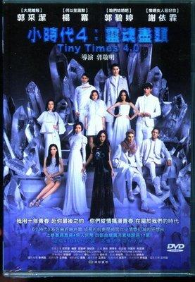 『光碟超市』電影 小時代4:靈魂盡頭DVD全新正版-起標價=結標價