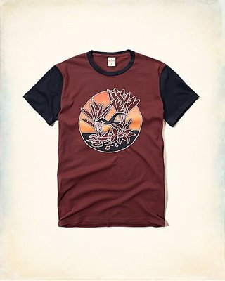 美國帶回 HOLLISTER男生Trapped Pattern Graphic Tee短袖T恤現貨S在台灣不必等