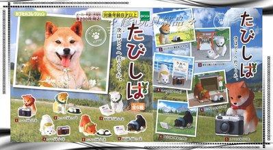 ✤ 修a玩具精品 ✤ ☾日本扭蛋☽ 到處旅行柴犬公仔 全6款 旅遊 點點滴滴的回憶