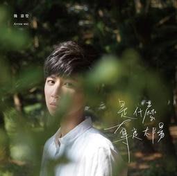 魏嘉瑩 Arrow Wei 是什麼奪走太陽CD,台灣正版全新