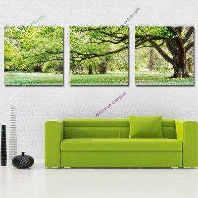 【70*70cm】【厚0.9cm】大樹-無框畫裝飾畫版畫客廳簡約家居餐廳臥室牆壁【280101_127】(1套價格)