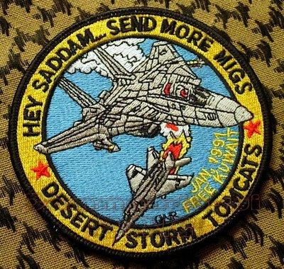 收藏品 美國 F-14雄貓TOMCAT 沙漠風暴紀念徽章 Send More MiGS