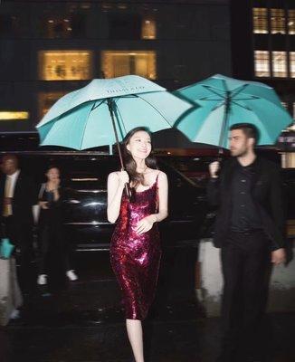 【Lydia代購】2021新品直立傘 防紫外線晴雨傘 Tiff* 實木手柄雨傘 實心纖維防風骨架