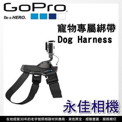 永佳相機_GOPRO Fetch Dog Harness  寵物專屬綁帶 售價1500元