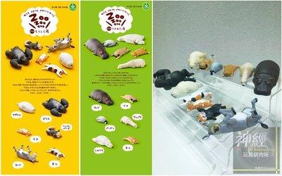 【神經玩具】現貨 T-ARTS 扭蛋 ZOO休眠動物園 1+2彈合賣 一套12種 熊貓之穴 轉蛋 非戽斗動物園