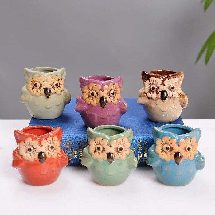 六色貓頭鷹花盆丶多肉盆(不含花)6個/組
