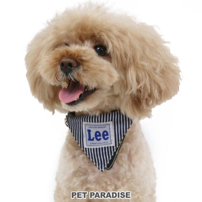 貝果貝果  日本 pet paradise 代理 LEE  牛仔藍 / 條紋藍 經典領巾頸圈 / 散布用 [A4266]