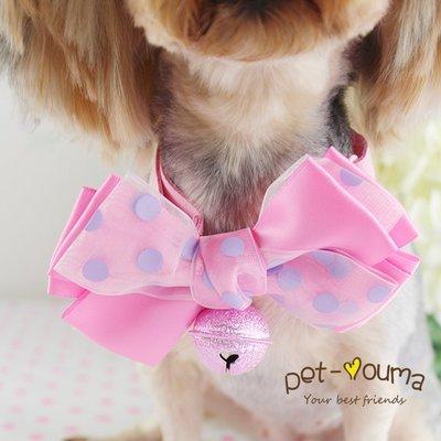 寵物用品 項圈 牽引繩 鈴鐺 名牌 頭飾雪紗緞帶~超可愛寵物鈴鐺項圈 狗狗泰迪約克夏項圈 領結 可調節