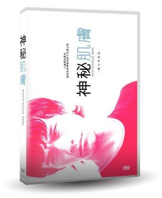 合友唱片 面交 自取 神秘肌膚【數位修復版】Mysterious Skin DVD