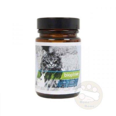紐西蘭biophive -(Feline Longevity Formula) 貓用長壽保健配方30g 免運費