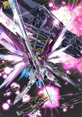 [機動戰士] ROBOT魂 Gundam - 200 命運脈衝高達 Destiny Impluse Gundam
