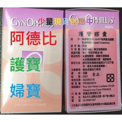 限時 特價益生菌Gynophilus膠囊 (14顆/罐) 阿德比 護寶 2024/02