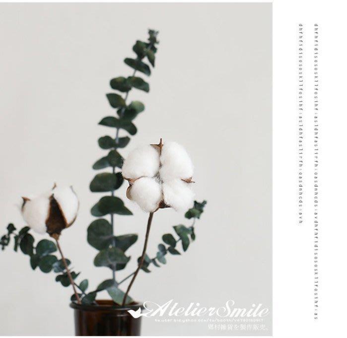 [ Atelier Smile ] 鄉村雜貨 小花園系列 彩色 天然棉花 裝飾果樹 仿真植物 拍攝道具 3支裝(現+預)