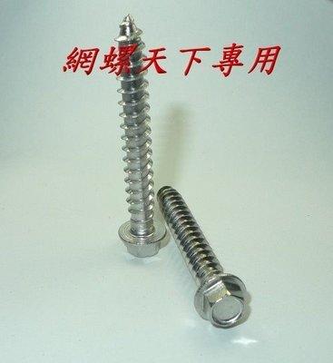 網螺天下※白鐵 不鏽鋼 水泥螺絲、六角華司鐵板牙、六角釘、藍波釘2分牙*5吋長,每支6.5元