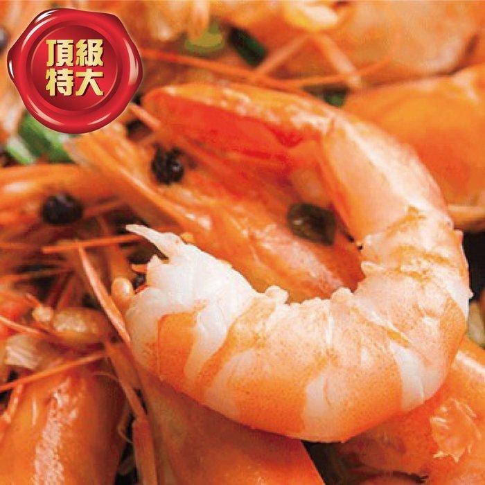【 hello ocean 】進口特大鮮甜熟白蝦 業務專用家庭號 原箱1.2kg