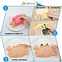 ▪3件套▪海洋系列貝殼螃蟹海豹咖哩米飯造型模/米飯壽司模具DIY便當模具/做飯工具/壽司模