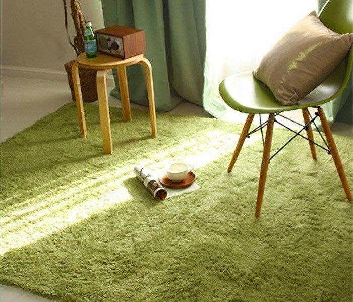 幸福小窩 輕豪宅風 160*120 CM 客廳臥室室內外腳踏墊 地毯 地墊 瑜珈墊 兒童遊戲爬行墊 多色地毯